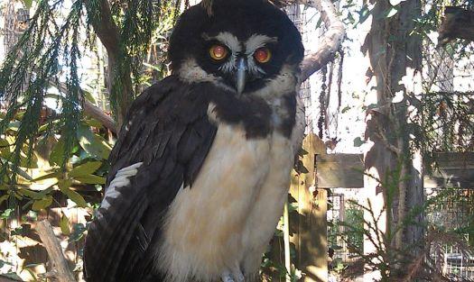 Salisbury Zoo MD.