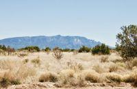 Social Distancing in the Desert