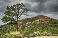 Sunset Crater National Monument - Arizona