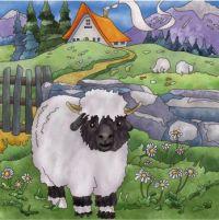 Baba white sheep