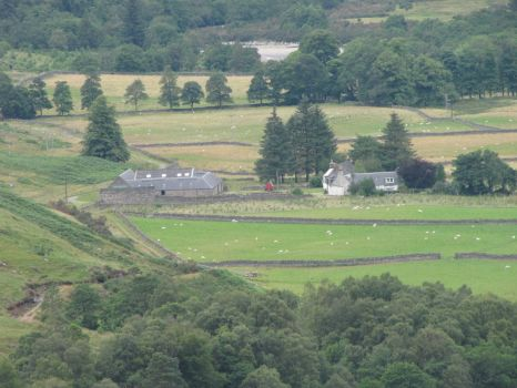 Scottish Highlands Farm