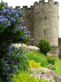 Stirling Castle Garden