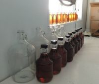 Just bottled maple syrup