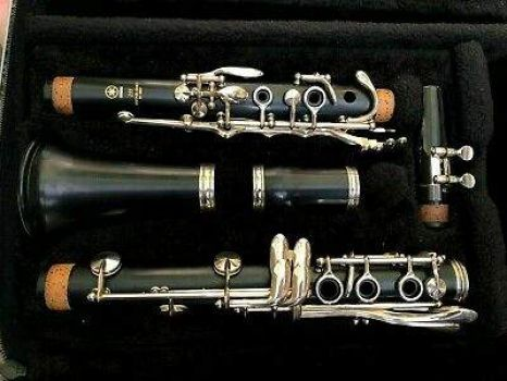 Clarinet in a case!