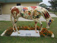 Ocala, FL horse #2, named Masquerade