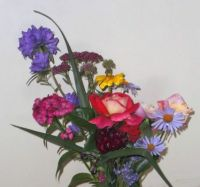 A bunch of summer flowers