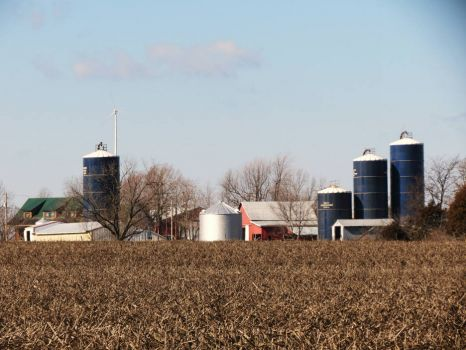Farm in Litchfield, IL
