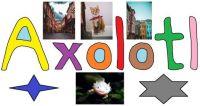 wobblybear's who's here? 201 - Axolotl (large)