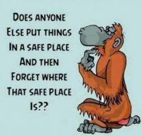 Does anyone else put things in a safe place ?