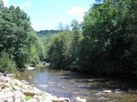 Gauley River at Camp Cowen
