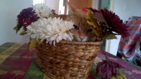Angus in a basket