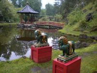 A Chinese style garden in Sweden