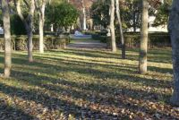 Jardines en Aranjuez