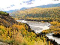 Alaskan Autumn Matanuska River