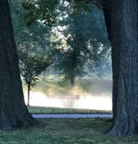 Early Morning Mist, Willmore Park (medium)