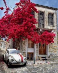 Volkswagen Beetle on Naxos Island