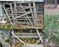Squirreling away walnuts: The old garden racks