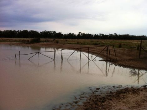 Bit overcast, just set my Yabbie Traps.