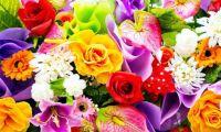flowers.jpg1
