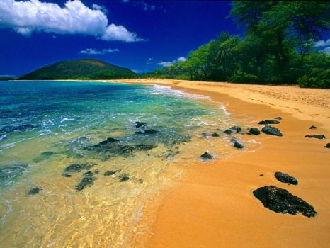 Big Beach Maui Hawaii