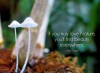 """2  ~  """"If you truly love nature, ..."""""""
