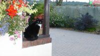 Sophie - joining next door ....