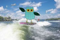 OWLYBIRD GOES SURFING