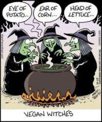 Vegan Witches :-)