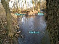 Soutok potoků    (Confluence of streams)