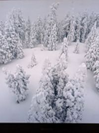 Snow in San Bernardino Mnts 04-09-2020