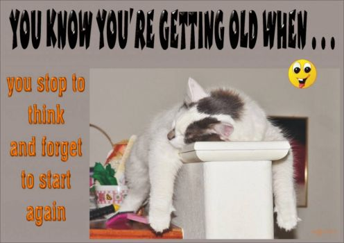 YOU KNOW YOU'RE GETTING OLD WHEN . . . (13)