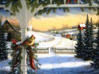 Winter Cardinal Scene