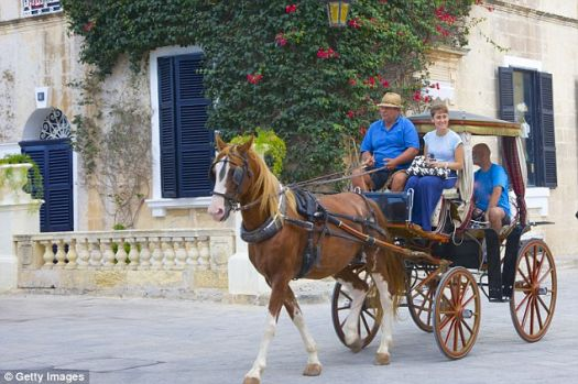 Horse drawn cart in Mdina