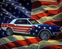 19641/2 Mustang!  Bandit...