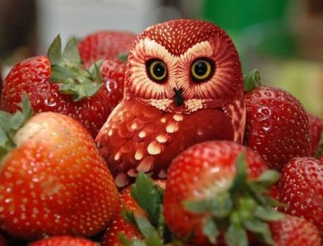 'Yummy Strawberry Art..!!