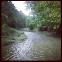 Redhill Valley Creek - Hamilton, Ontario