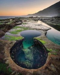 Royal National Park, New South Wales, Australia