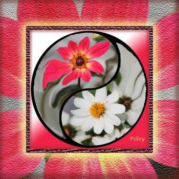 ying.yang.FLOWERS.red.white