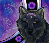 the wolf mage
