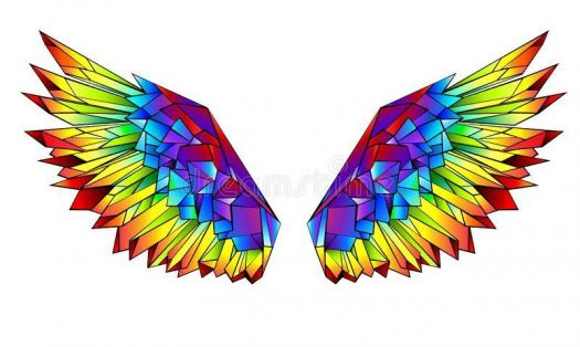 Warrior Wings