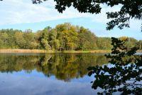 Golden autumn in Brandenburg