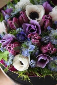 -purple-tulips-white-flowers
