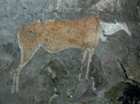 South African cave painting