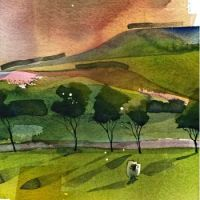 A Single Sheep by watercolor painter Mary Ann Rogers