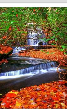 Grogan Creek Waterfall, North Carolina