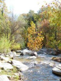 Stream by Chimney Rock - North Carolina