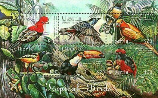 Theme :  Birds - Tropical Birds Postage Stamps