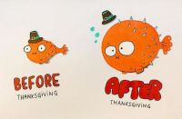 Before and After Thanksgiving