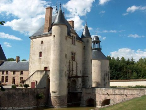 Castle of Chamerolles, France #1