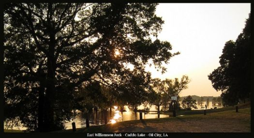 Earl Williamson Park -Caddo Lake - Oil City LA